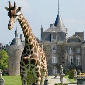 zoo bourbansais